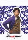 The Big Bang Theory Season 5 Character Standee CS04 - Raj
